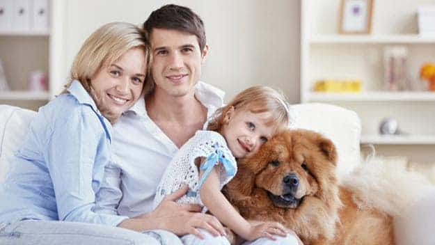 Wills & Trusts dog-young-family Direct Wills West Malling